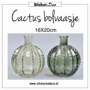 Cactus bolvaasje 16x18
