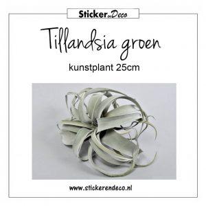 Tillandsia groen 25cm kunstplant